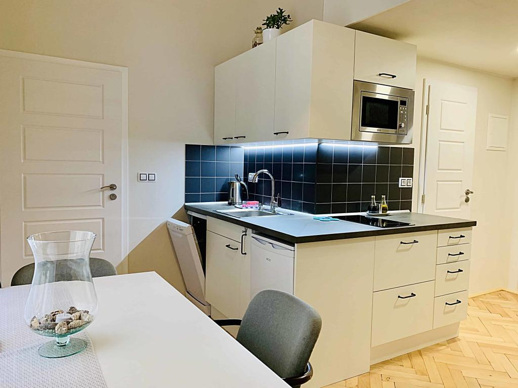 Marienbad Apartment Mariánské Lázně kuchyně